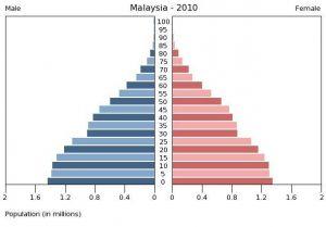 マレーシア人口ピラミッド